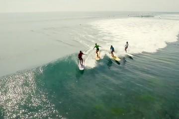 FI_surf_worm_dreams_big