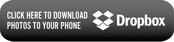 download_dropbox_button_web