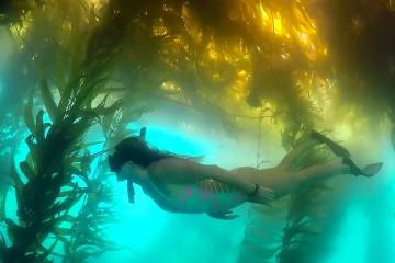 fi_tavel_ocean_adventures_with_melissa_marquardt