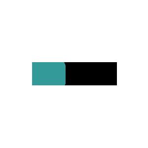WSA Womens Skateboarding Alliance Logo - Mahfia Partner